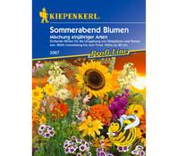 Kiepenkerl Samen Sommerabend Blumen