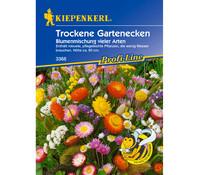 Kiepenkerl Samen Trockene Gartenecken