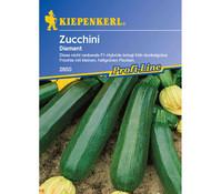 Kiepenkerl Samen Zucchini 'Diamant'