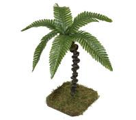 Kolbe Palme, 18 cm
