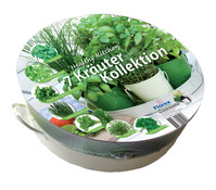 Kräuterkollektion - Tablet mit 7 Kräutern