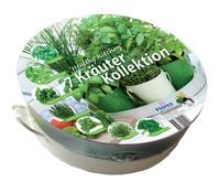 Kräuterkollektion Tablett mit 7 Kräuter