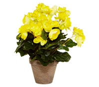 Kunstpflanze Begonie, 30 cm