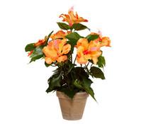 Kunstpflanze Hibiskus, 40 cm
