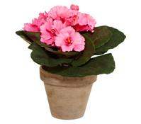 Kunstpflanze Usambaraveilchen, 20 cm