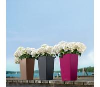 LECHUZA® Cubico Color, eckig, 41 x 22 x 22 cm