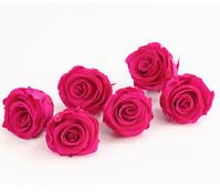 Long-Life-Rose, Ø 6 - 6,5 cm