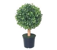 Mica Kunstpflanze Buchsbaum