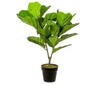 Mica Kunstpflanze Ficus Lyrata im Topf