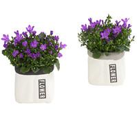 Mini-Glockenblumen in Keramik