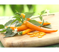 Orange Peperoni, scharf