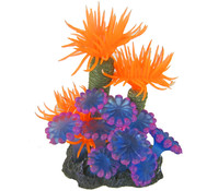 Orbit Smiling Coral Arrangement, Aquariumdeko, orange-violett