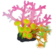 Orbit Smiling Coral Arrangement, Aquariumdeko, pink-gelb
