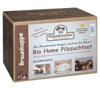 Pilzmännchen Bio Home Pilzzuchtset Braunkappe