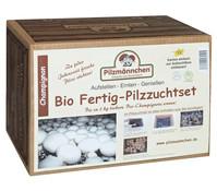 Pilzmännchen Bio Pilzzuchtset Champignon