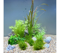 Planet Plants 20er Set 7 Bund & 2 Topf, Aquarium Pflanzen