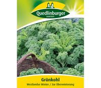 Quedlinburger Samen Grünkohl 'Westlandse Winter'