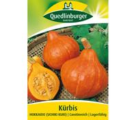 Quedlinburger Samen Kürbis 'Hokkaido'