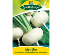 Quedlinburger Samen Mairübe 'Platte Witte Mei'