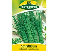 Quedlinburger Samen Schnittlauch 'Middleman'