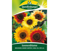 Quedlinburger Samen Sonnenblumen 'Mischung hoher Sorten'