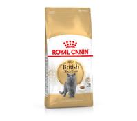 Royal Canin British Shorthair Adult, Trockenfutter