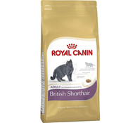 Royal Canin British Shorthair Adult, Trockenfutter