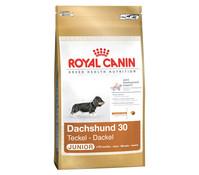 Royal Canin Dachshund Junior, Trockenfutter, 1,5 kg