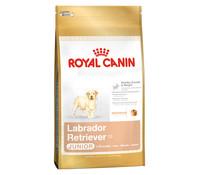 Royal Canin Labrador Retriever Junior, Trockenfutter