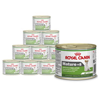 Royal Canin Mini Mature 8+, Nassfutter, 12 x 195 g