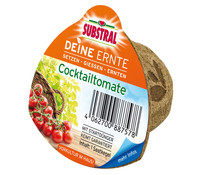 Scotts Substral® Deine Ernte Saatkegel 'Cocktailtomate'