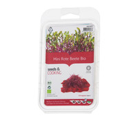 seeds&COOKING Rote Beete