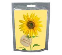 seeds&WISHES Sonnenblume 'Herzlichen Glückwunsch'
