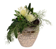 Seidenblumen-Arrangement Protea und Succulenten