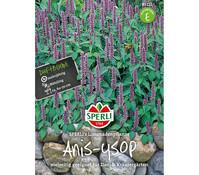 SPERLI Samen Anis-Ysop 'SPERLI´s Limonadenpflanze'