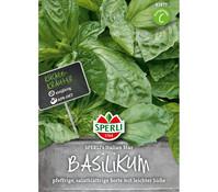 SPERLI Samen Basilikum 'SPERLI's Italian Star'