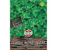 SPERLI Samen Neuseeländer Spinat 'Carla´s Bester'