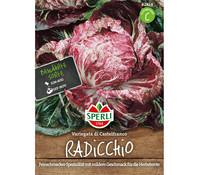 SPERLI Samen Radicchio 'Variegata die Castelfranco'