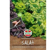 SPERLI Samen Salat 'Pflücksalatmischung'