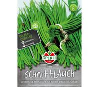 SPERLI Samen Schnittlauch 'Staro'