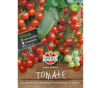 SPERLI Samen Tomate 'Sweet Million'