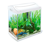 Tetra AquaArt Aquarium-Set, 30 l, weiß