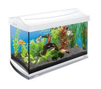 Tetra AquaArt Aquarium-Set 60 l, weiß