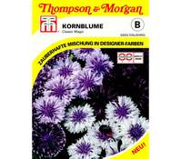 Thompson & Morgan Samen Kornblume 'Classic Magic'