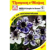 Thompson & Morgan Samen 'Nigella Delft Blue'
