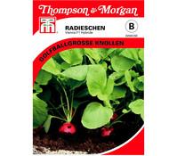 Thompson & Morgan Samen Radieschen 'Vienna'