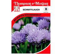 Thompson & Morgan Samen Schnittlauch