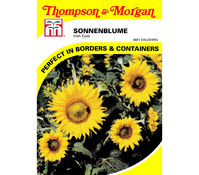 Thompson & Morgan Samen Sonnenblumen 'Irish Eyes'