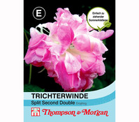 Thompson & Morgan Samen Trichterwinde 'Split Second Double'