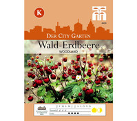 Thompson & Morgan Samen Wald-Erdbeere 'Woodland'